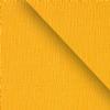 Brighton mustard